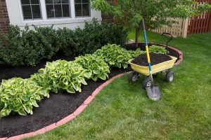 add value to your home with landscaping